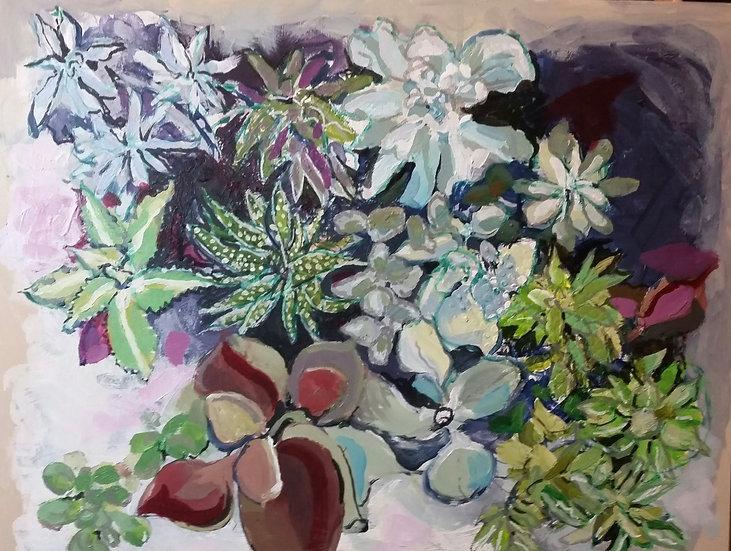 Succulents by Carol Wade