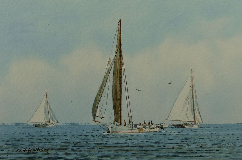 Skipjacks by Keith Whitelock