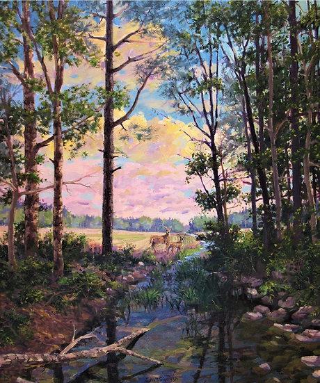 Deer's Creek by John Eiseman