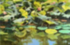 ELisle Relfections on Lotus Flowers.JPG