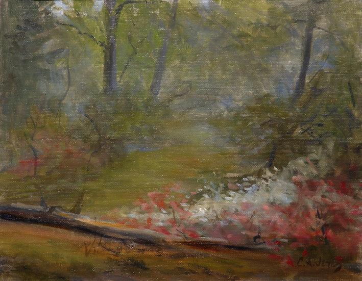Foggy Woods by Cesar Jerez