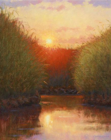 Marsh Maze Ablaze by Joseph Burrough