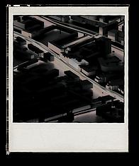 polaroid 6.png