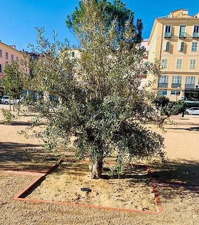 olivier 1.jpg