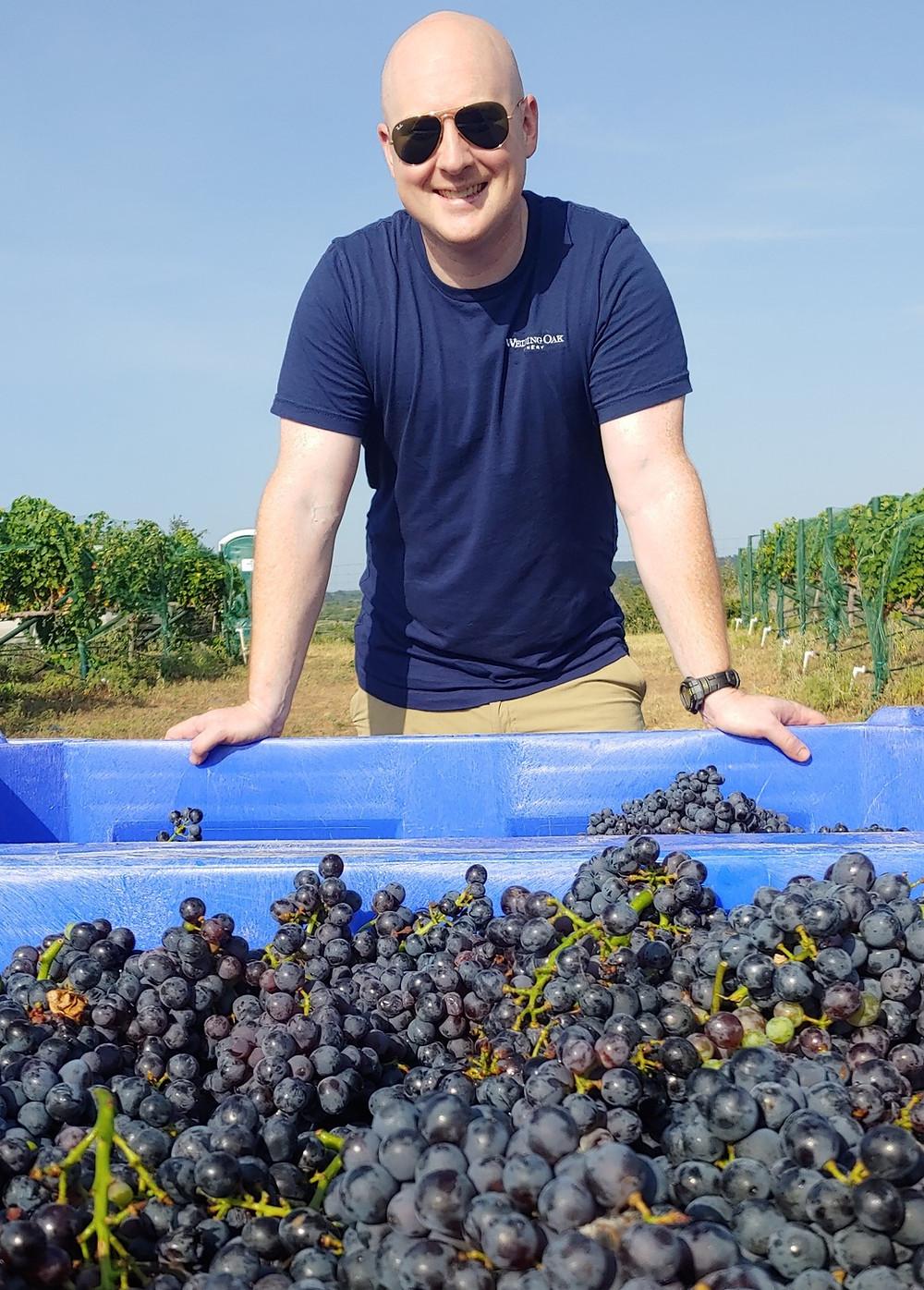 Seth Urbanek, Wedding Oak Winery