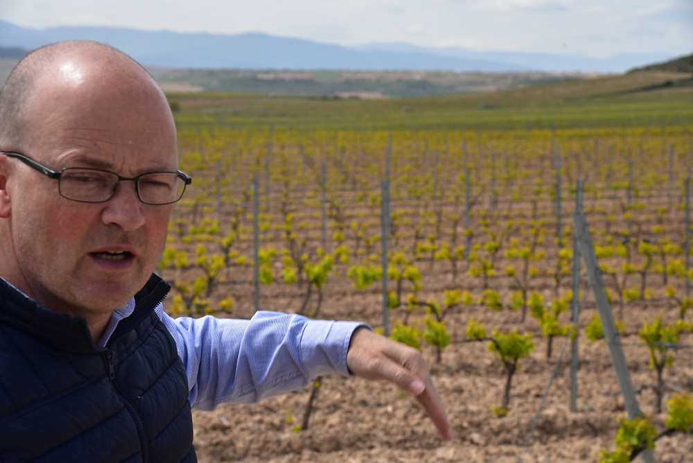 Chema Ryan Murua describes the El Gallo vineyard