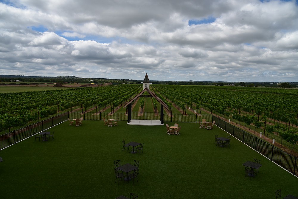 View From The Tasting Room Over The Estate Vineyard