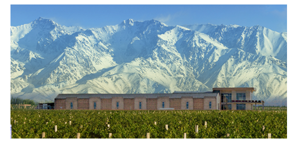 Image of Domaine Bousquet set against the Andes