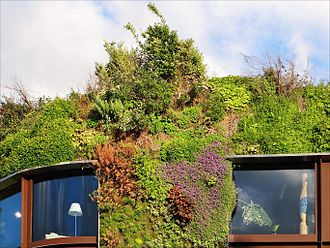 Detail of Patrick Blanc's exterior green wall of the Musée du Quai Branly (image 2012). Courtesy Wikiedia.