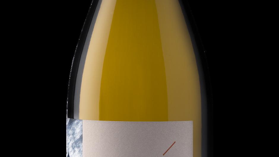 WINE REVIEW: Cedar+Salmon 2020 Pinot Noir, Willamette Valley, OR ($19)