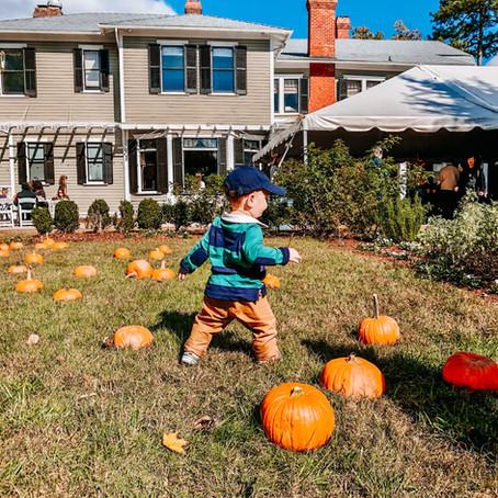 The Best Apple Orchards & Pumpkin Patches around Richmond