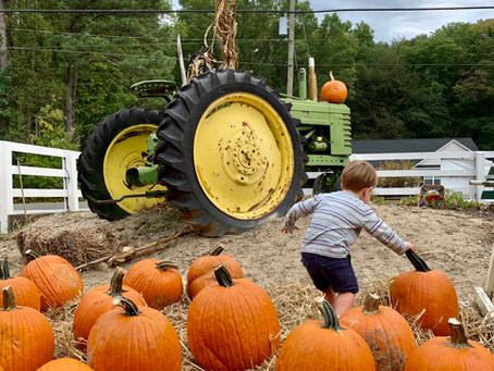Apples, Pumpkins & Hayrides!