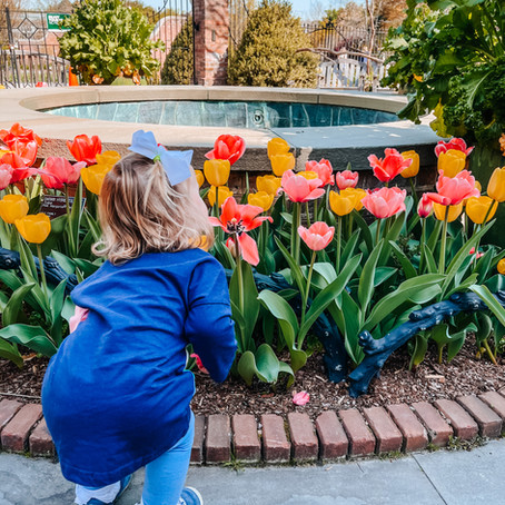 Local Ways to Celebrate Mother's Day