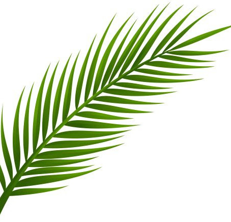 Second Baptist Church's Palm Sunday Activities for Children