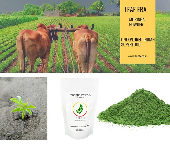 How to use Leaf Era Moringa Powder