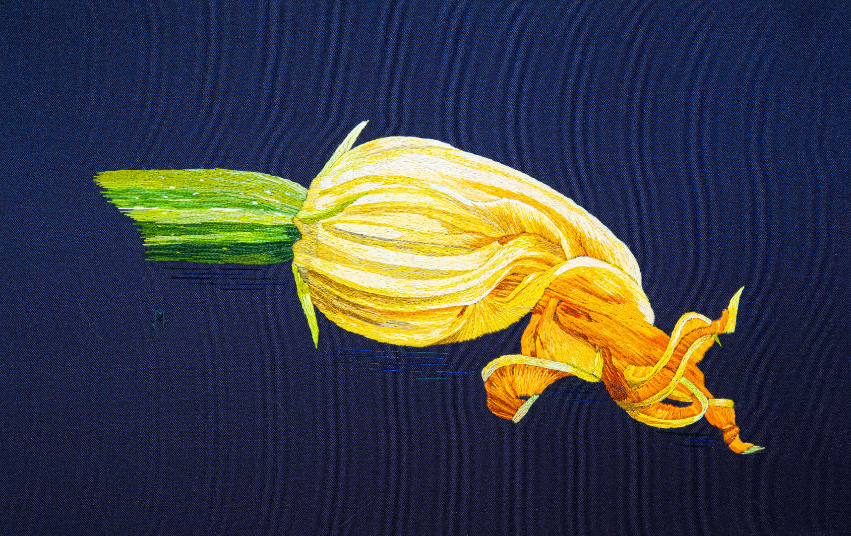 Botanical - Courgette