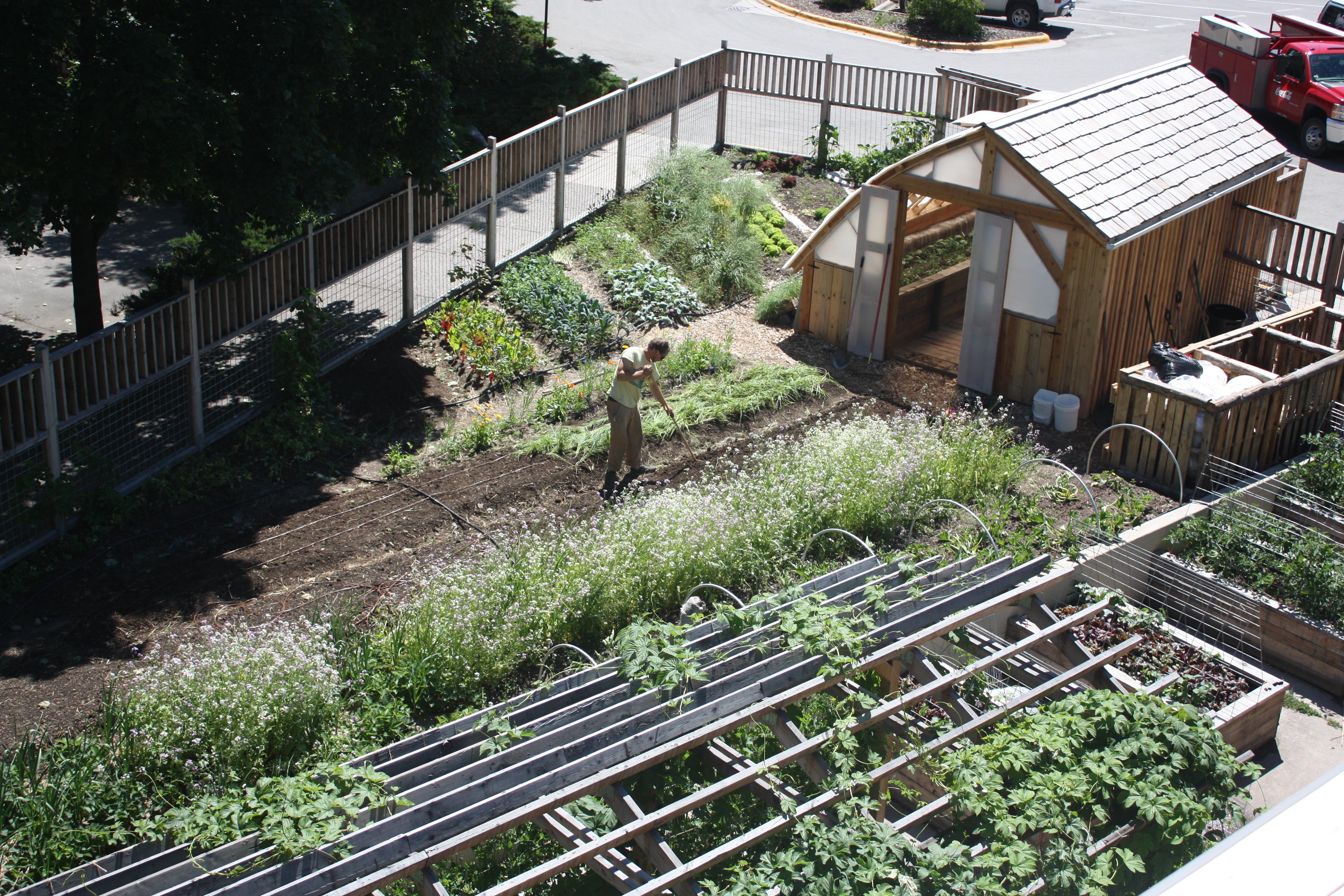 The Lommasson Garden