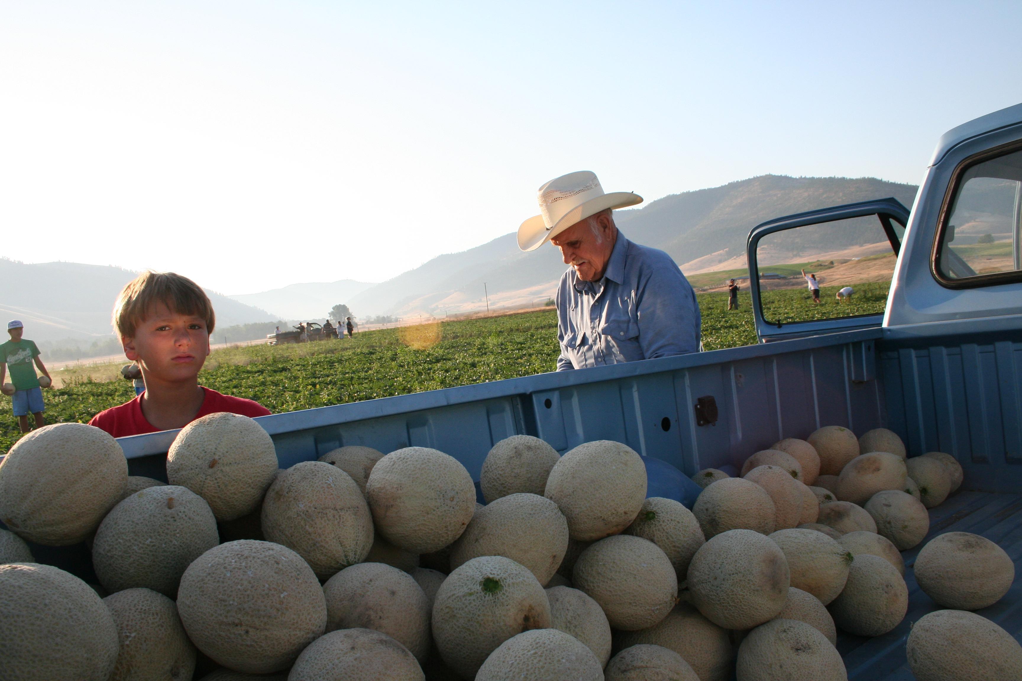 Dixon Melons