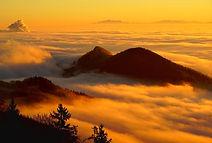 fog-3461451_1920.jpg