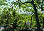 Cooktown has some great hikes