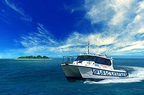 Bloomfield Escape Reef trips