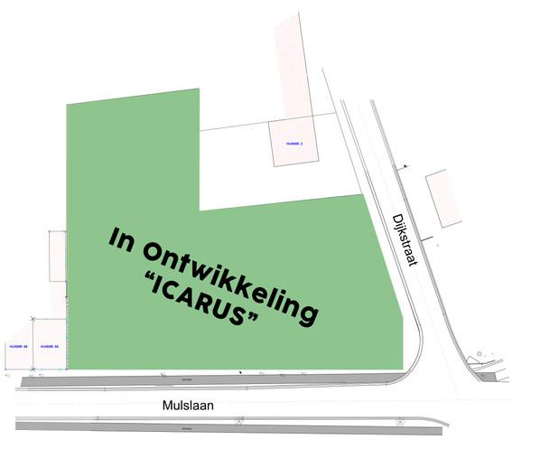 Website Icarus plan.jpg