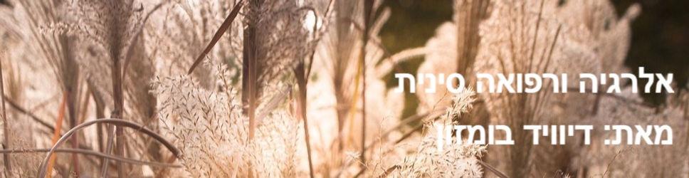 wheat-grasses-3777329_960_720_edited_edi