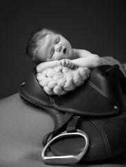 Newborn Horse Saddle Photoshoot