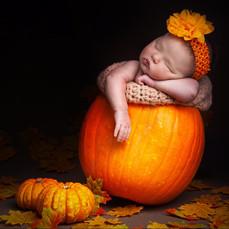 Newborn Prop Photography