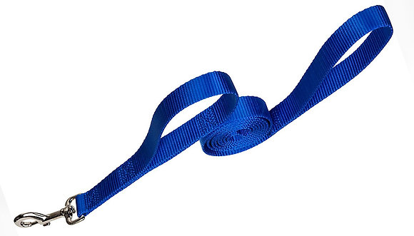 Grrrip Big Dog Leash - 4' x 1""
