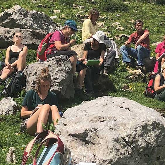 Alpine Heilpflanzenwanderung (BASIS-MODUL)