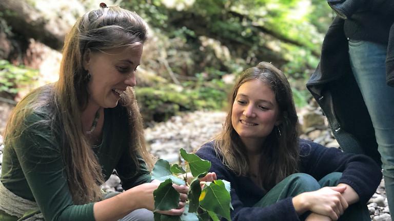 """Naturverständnis & Heilmittel in der Tradit. Europ. Naturheilkunde (FB: """"Heilpflanzen & Hausapotheke"""") (NOCH 2 PLÄTZE)"""