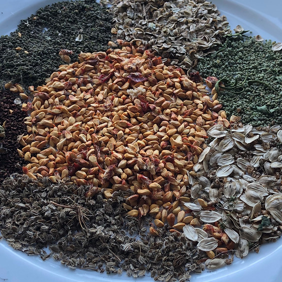 Wildpflanzen und Samen im Spätsommer (BASIS-MODUL-WARTELISTE)