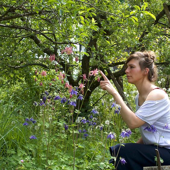 Biodiversität verstehen und fördern - Handlungsmöglichkeiten im eigenen Garten entdecken (Weiterbildung)