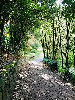 Botanical Gardens Walk