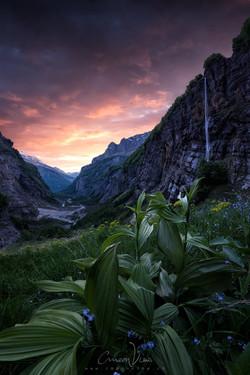 faery valley
