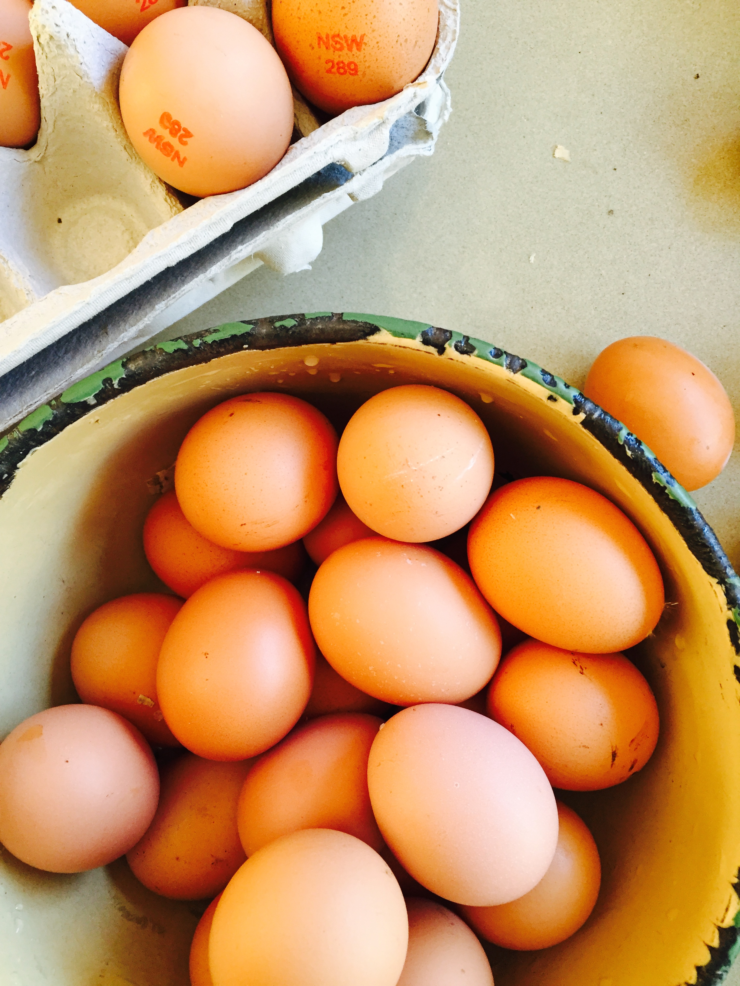 Farm Activities - fresh eggs