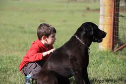 Farm walks at Sharron Park