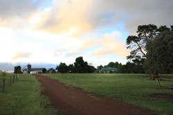 View to the Sharron Park homestead