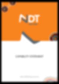 WEB - CS - NDT-1.png