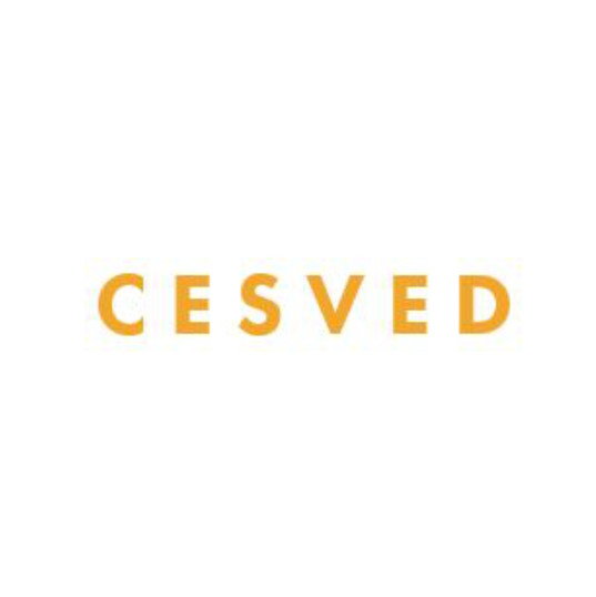 CESVED square.jpg
