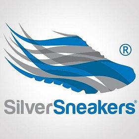 silver sneakers.jpeg