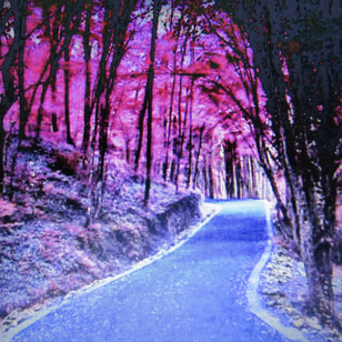 The Beautiful Road