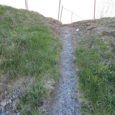 Rocky Uphill Battle