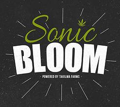 SonicBoom Logo v1.jpg