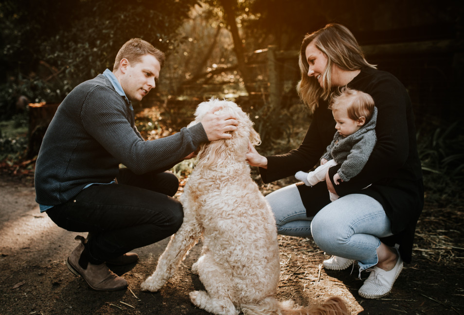 Family Photos and videos | Melbourne | Paige Gotts Photography