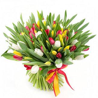 Купить тюльпаны в спб