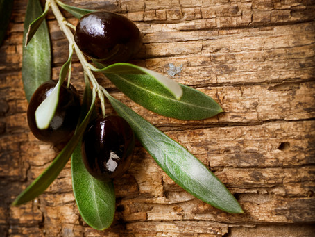 Industry Reports Name BioAktive a Key Player in Olive Squalane
