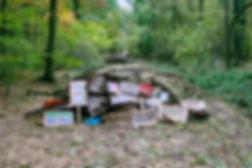 Hambacher Forst_18-11-02_17_2400px.jpg