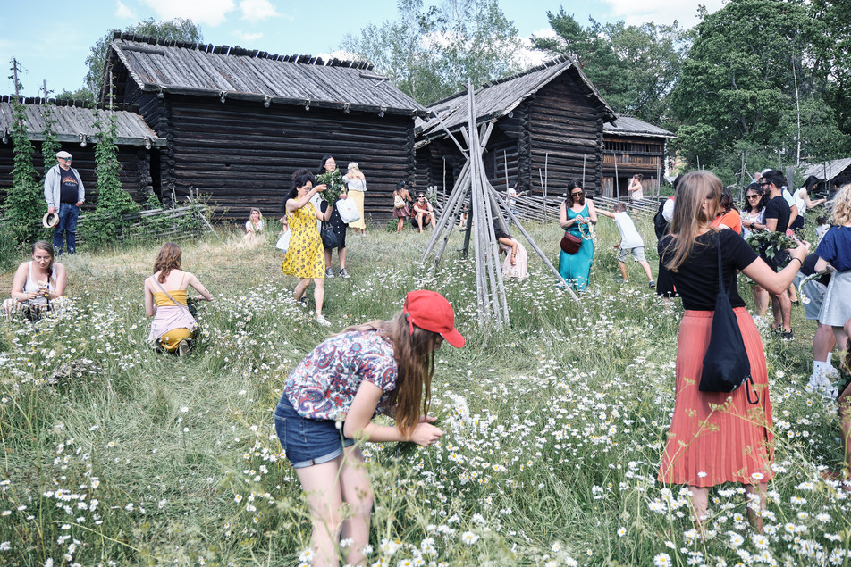 SWEDEN / Stockholm / 21.06.2019 / Visitors at Skansen, Stockholm`s open air museum, collecting flowers to make a head wreath, a typical midsummer tradition. © Gregor Kallina